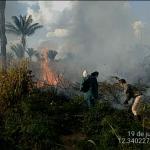 A Voz do Povo: incêndio atinge área no Assentamento Pé no Chão, em Sorriso