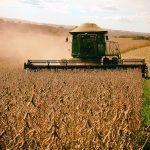 Produção de grãos na safra 2020/21 tem volume estimado em 252,3 milhões de toneladas