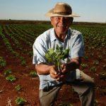 Dia 28 de Julho é comemorado o Dia do Agricultor